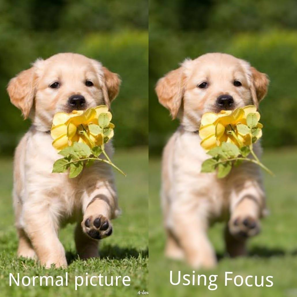 Fotor photo editor app