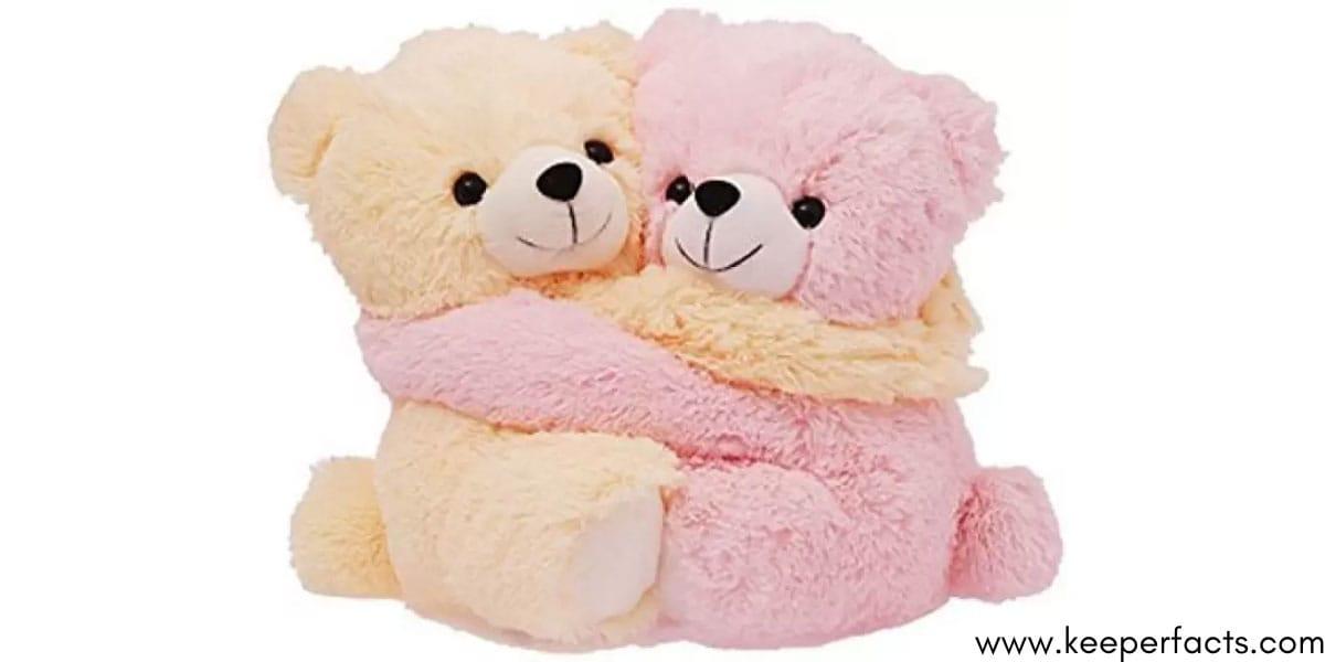 Cute Couple Teddy Bear Valentine Best