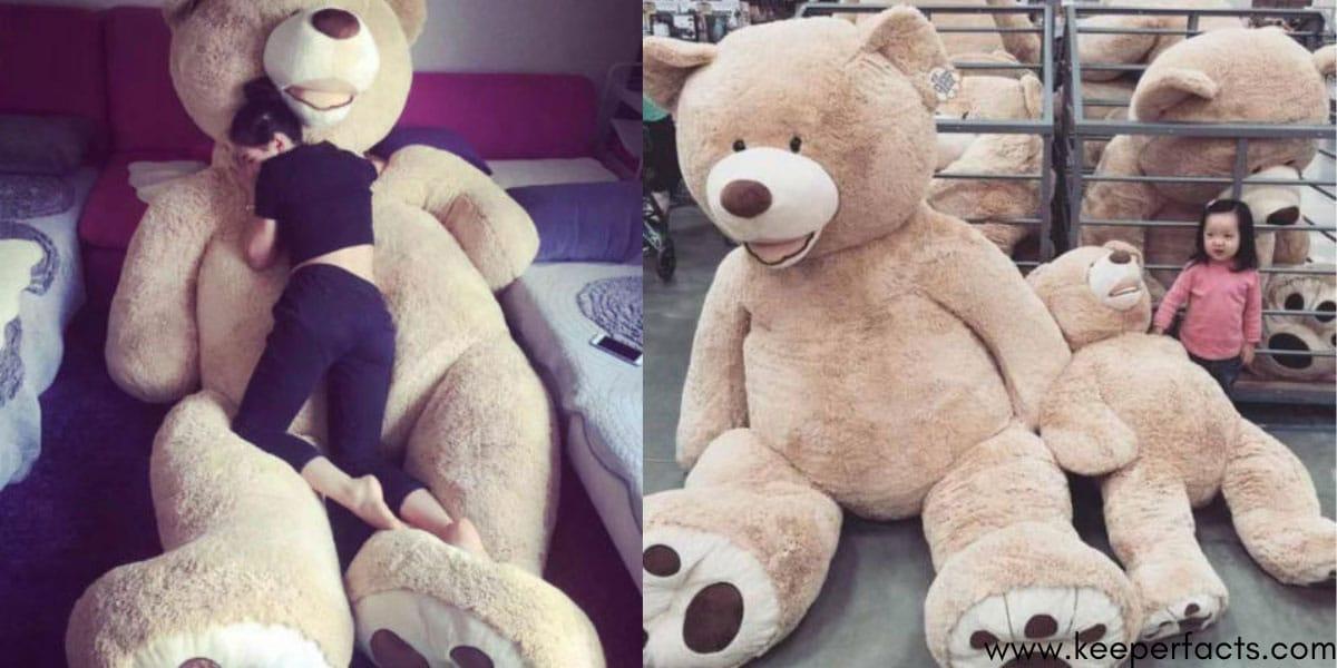 Teddy Bear with Big Footprints