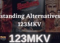 Outstanding Alternatives to 123MKV