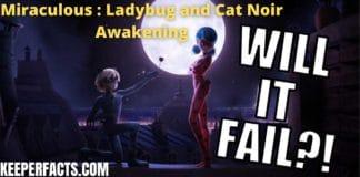 Miraculous : Ladybug and Cat Noir Awakening