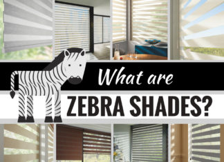 What You Should Consider When Including Zebra Shades in Your Space